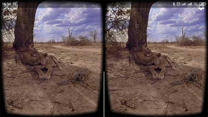 VR режим просмотра на смартфоне
